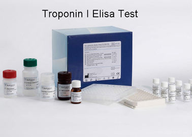 China Troponin I Elisa Test Kit  High Accuracy 96wells / kit Quantitative Measurement supplier