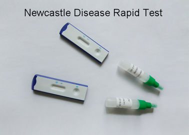 Newcastle Disease Virus Veterinary Test Kits Visual Judgement 99% Accuracy